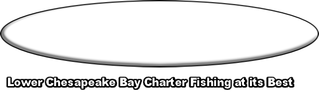 Lower Chesapeake Bay Charter Fishing at its Best
